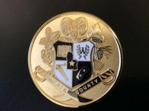 WCHS Crest Pin